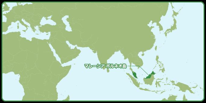 ボルネオ島の地図