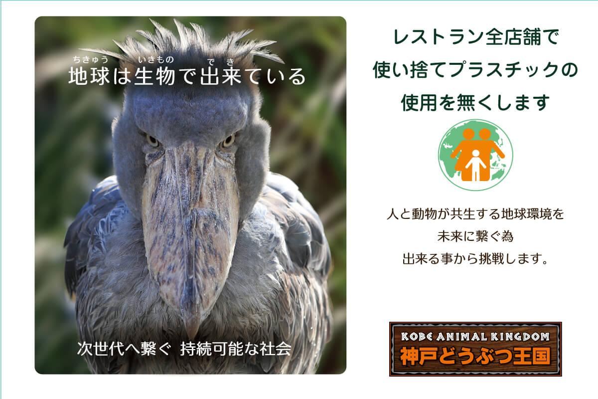 ■神戸どうぶつ王国は使い捨てプラスチック製品廃止にチャレンジします
