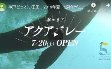 神戸どうぶつ王国 2019年夏 5周年新エリアCM 30秒