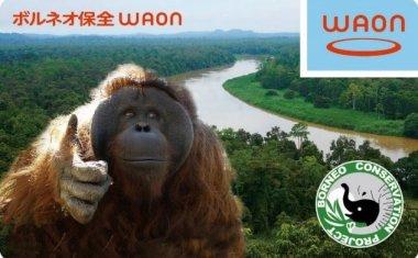 ■ご当地WAON「ボルネオ保全WAON」販売開始のおしらせ