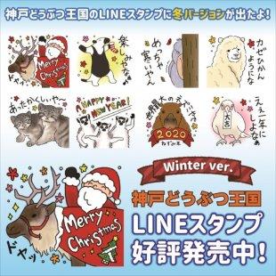 """神戸どうぶつ王国公式LINEスタンプ""""冬バージョン""""の販売を開始しました!"""