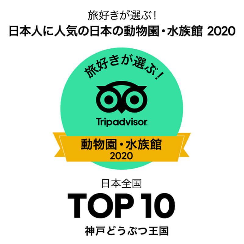 トリップアドバイザー 旅行好きが選ぶ動物園水族館部門 10位 神戸どうぶつ王国