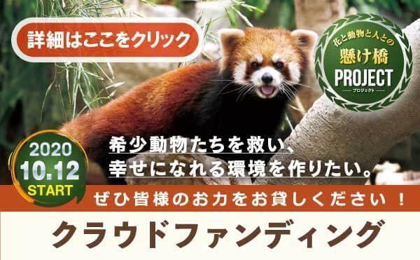 神戸CF_スライドクリック_MOV