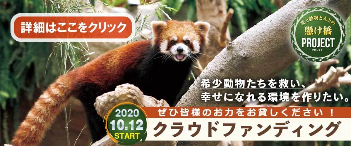 神戸CF_スライドクリック_PC
