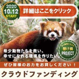 クラウドファンディング「花と動物と人との懸け橋プロジェクト」10/12(月)スタート!