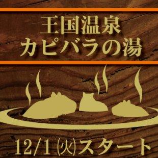王国冬の風物詩「王国温泉 ~カピバラの湯~」12/1からスタート!