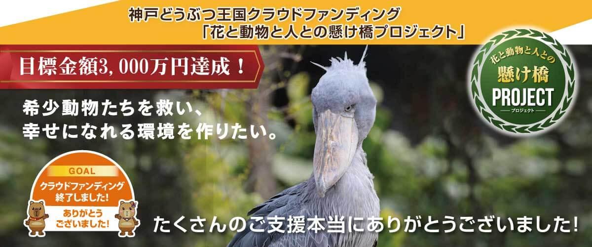 神戸CF_終了PC2