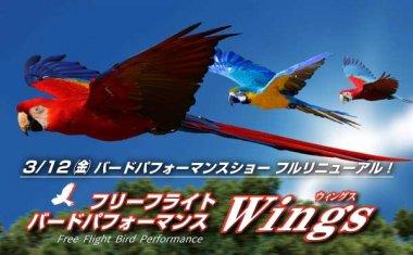 "《NEW》フリーフライトバードパフォーマンス""Wings(ウィングス)"""