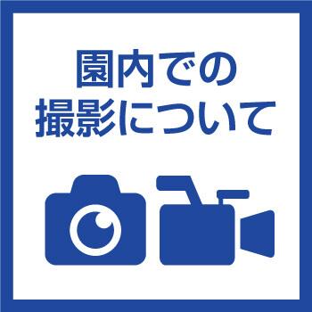 園内での写真撮影・動画撮影について