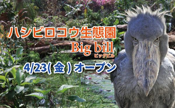 ビッグビル用スライド_MOV