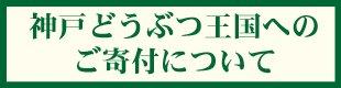 gokifu4