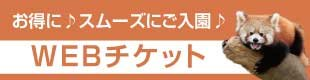 web_ticket310-80
