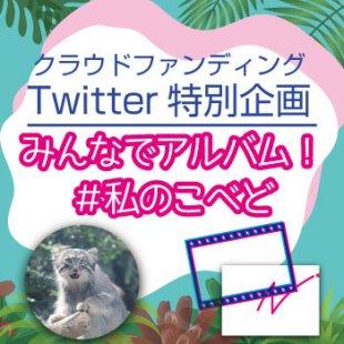 クラウドファンディングTwitter特別企画「みんなでアルバム!#私のこべど」