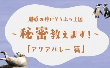 魅惑の神戸どうぶつ王国~秘密教えます!~「アクアバレー篇」【クラウドファンディング】