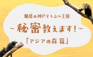 魅惑の神戸どうぶつ王国~秘密教えます!~「アジアの森編」【クラウドファンディング】